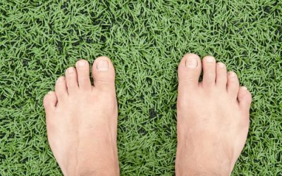 The Benefits of Synthetic Turf