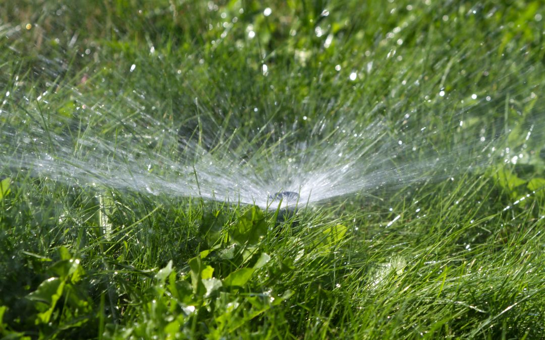 The Importance of Quality Irrigation
