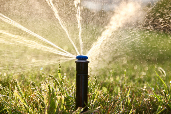 echuca landscaping and irrigation